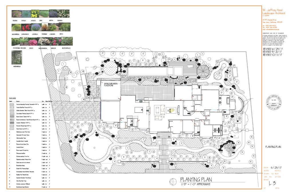 Planting-Plan-1024x683